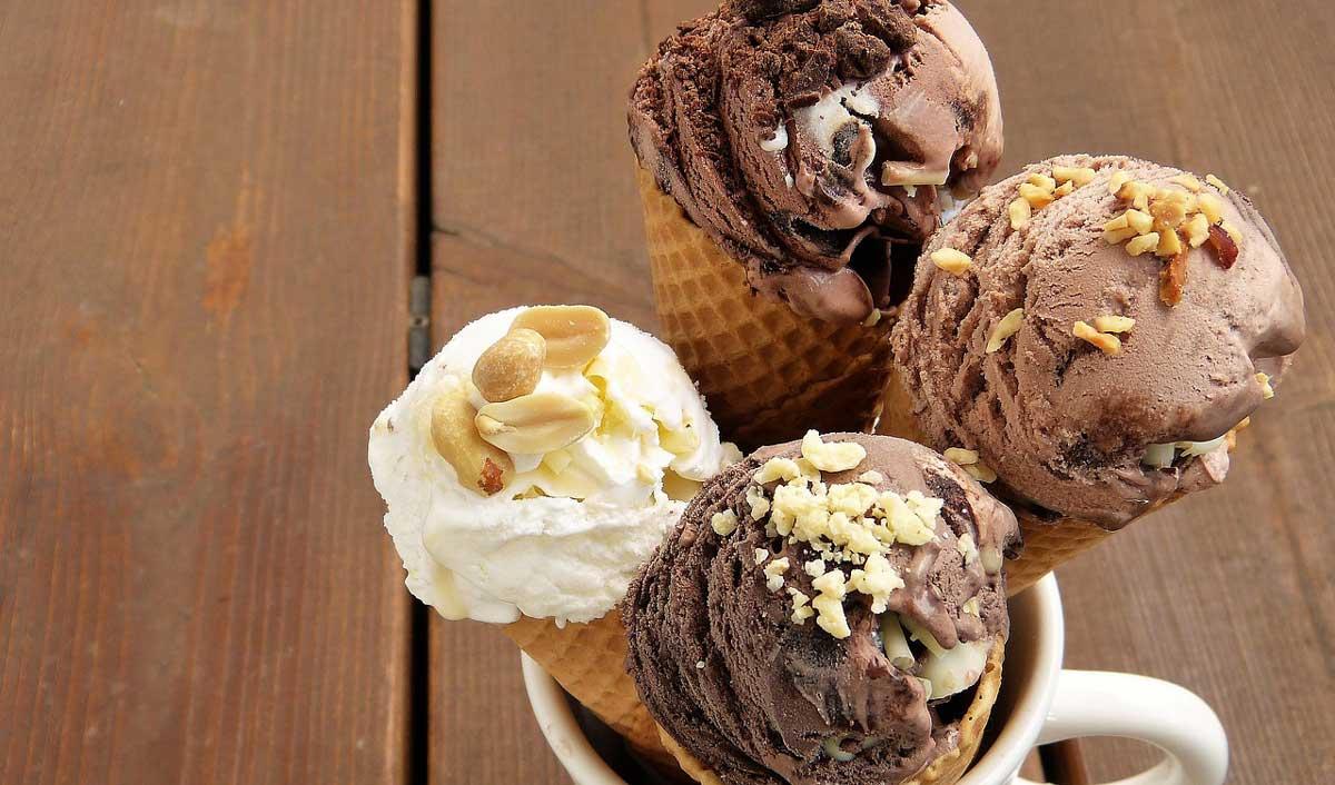 Froneri unveils plant-based ice cream brand 'RØAR'