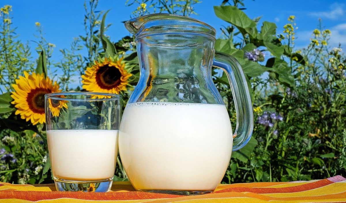 Mother Dairy strengthening footprint in Tier-II cities