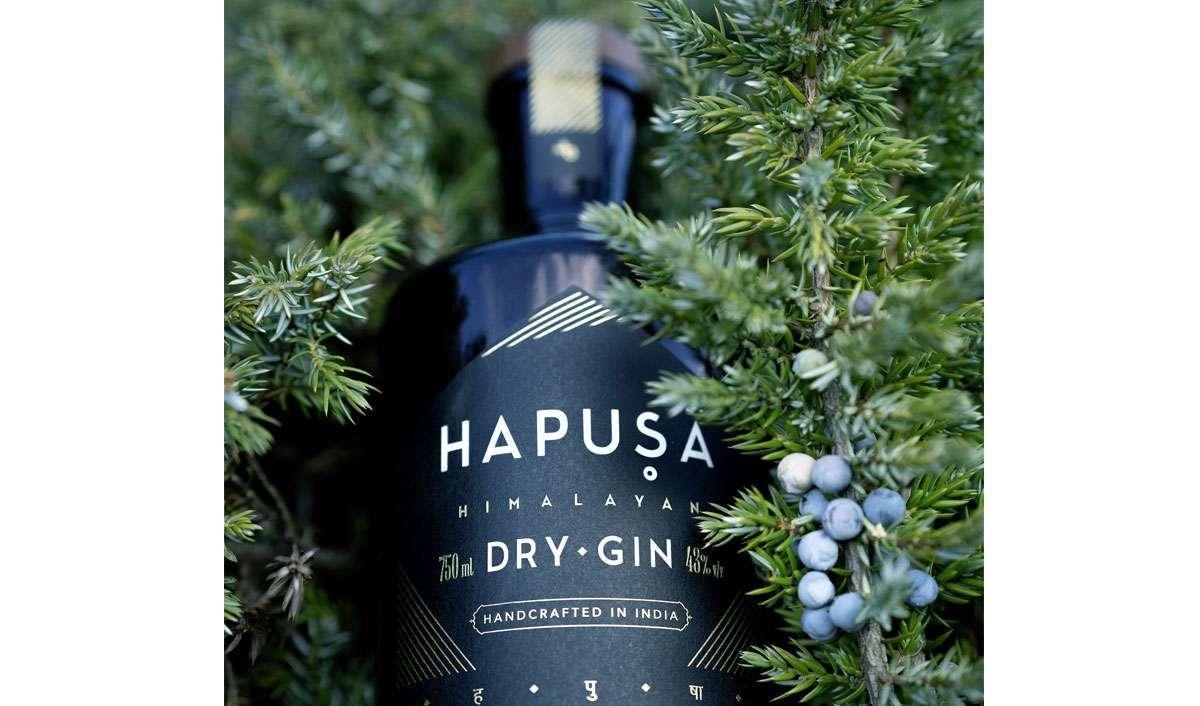 Hapusa Nao Spirits